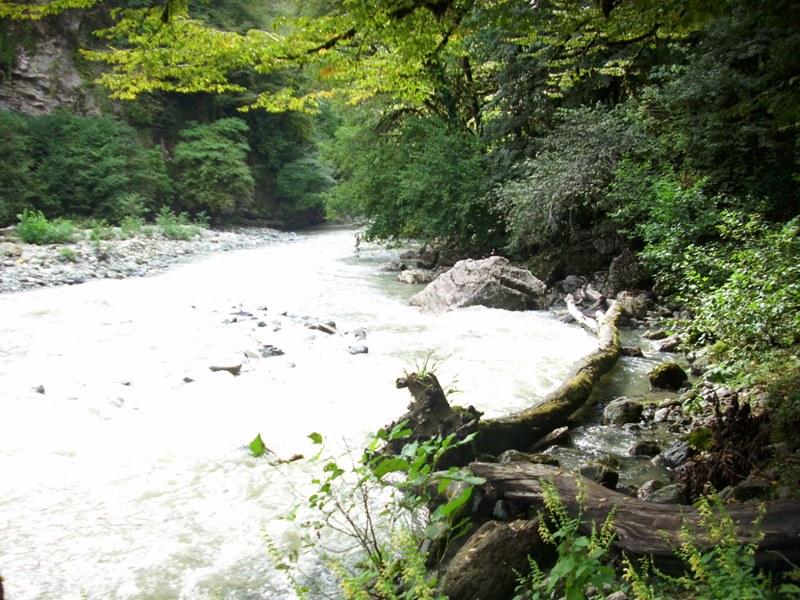Долина реки Сочи