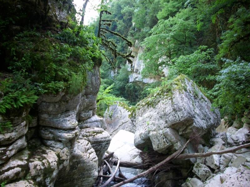 Ущелье реки Хоста