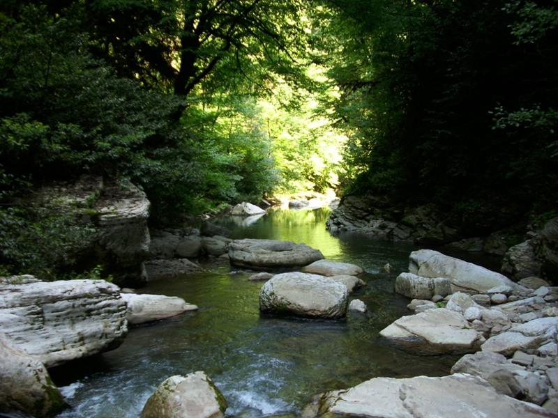 Долина реки Хоста