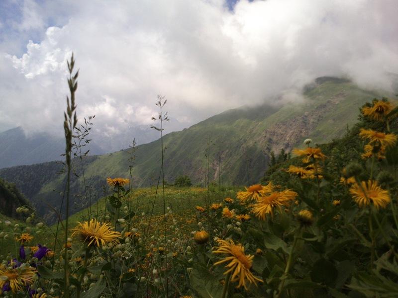 Лето в кавказских горах