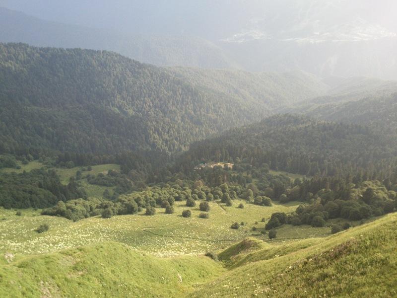 В Кавказском Заповеднике