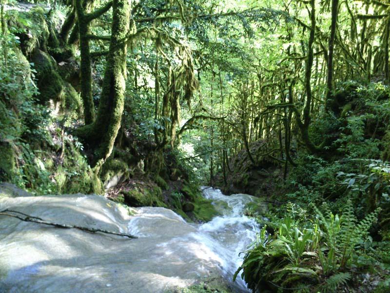 Национальный парк Сочи