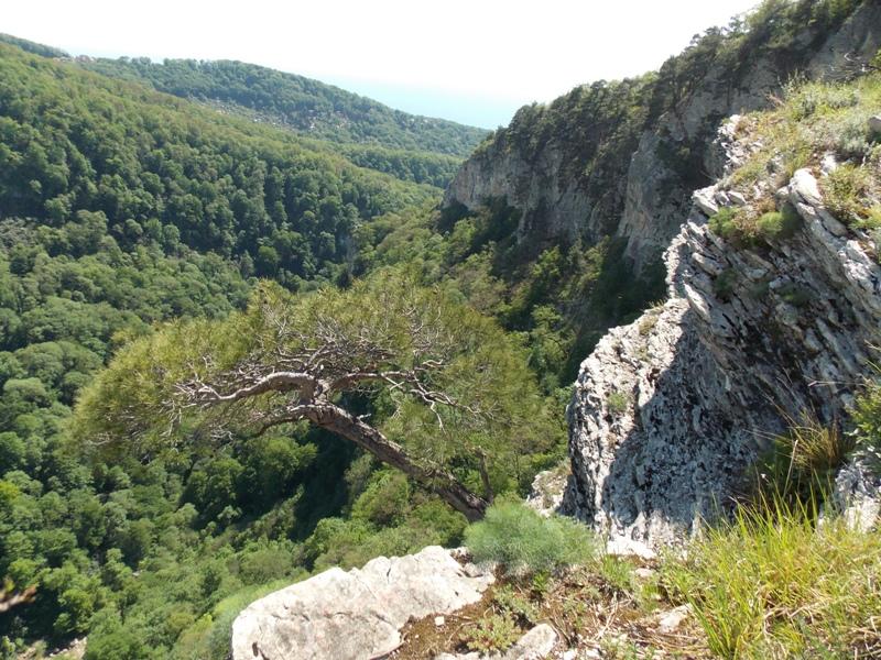 Вид гор Сочи