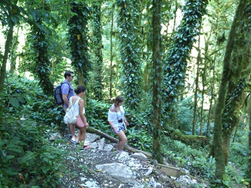 Туристические Экскурсии Сочи