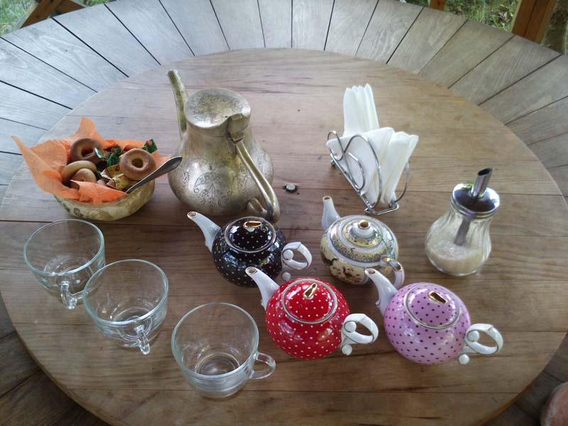 Чайное хозяйство